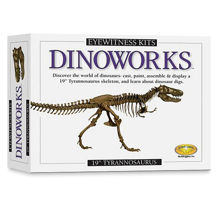 "Eyewitness Dinoworks 19"" Tyrannosaurus Rex Kit, Multicolor"