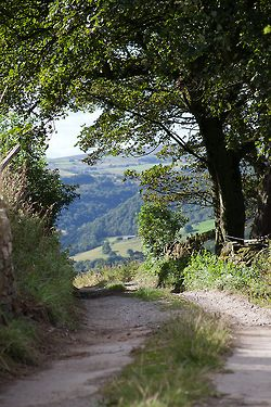 A Yorkshire lane. North England, away from the crowds - the most glorious countryside.