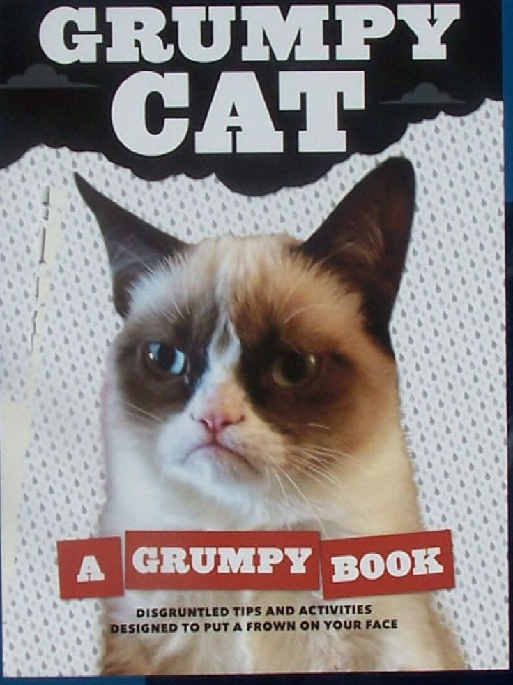 Grumpy Cat : A Grumpy Book by Chronicle Books Staff and Grumpy Cat Staff... NOTE: The Photos are Stock photos. These are new books that were part of a bookstore closing. They have been in storage sinc