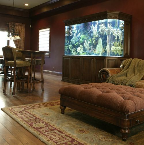 Wonderful Top Class Aquariums By Acrylic Aquariums U2013 Adorable Home Pictures