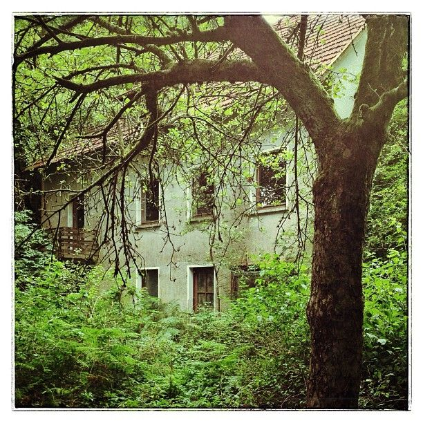 Lost Places Saarland Geocaching: Explorations Of Beauty And Decay: Lost Place Im Wald