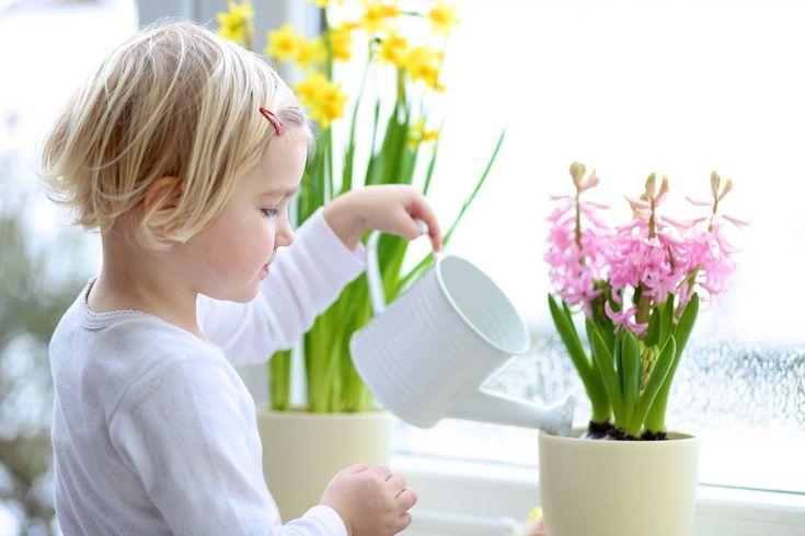 Tavaszi hangulat a lakásban - Díszpárna Blog