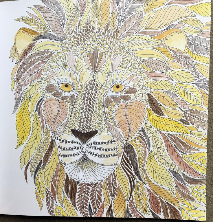 Wild Savannah A Coloring Book Adventure Millie Marotta Adult