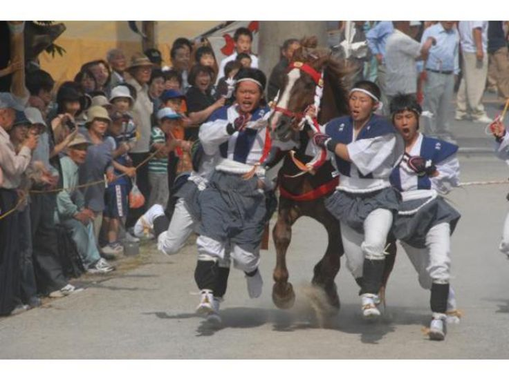 玉若酢命神社 御霊会風流 玉若酢命(たまわかすみこと)を主祭神とする隠岐の古社、玉若酢命神社で、県の無形民俗文化財に指定されている「玉若酢命神社 御霊会風流(ごれえふりゅう)」が斎行されます。隠岐、島後の三大祭のひとつで、飛鳥・奈良時代に始まったとされる神事です。8地区から集まった神馬が、鳥居から拝殿までの参道を一気に駆け上がる「馬入れ神事」は圧巻です。