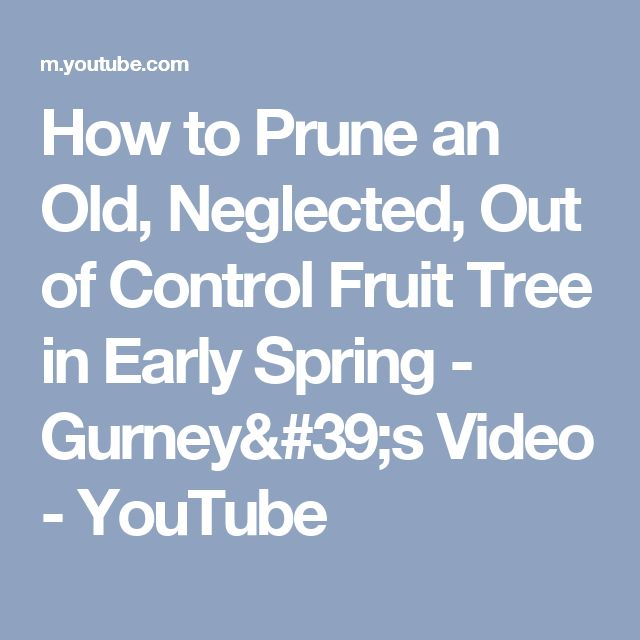 70 Best Pruning Fruit Trees Images On Pinterest Pruning