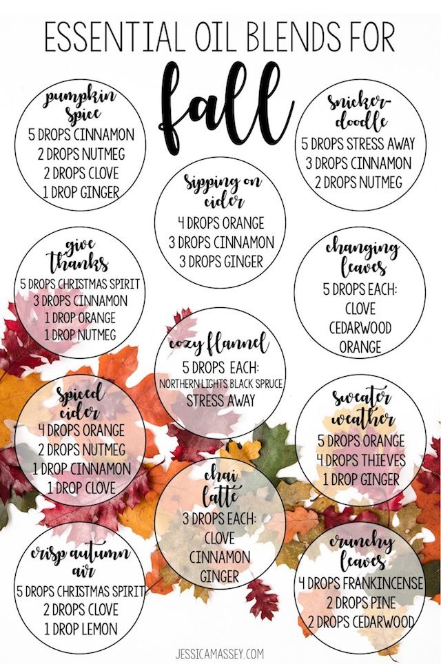 Essential Oil Diffuser Blends For Fall With Images Essential