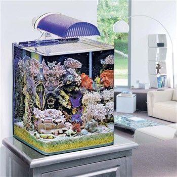Aquariums Aqua 30 LED - Tropical Kit - Aquarium et
