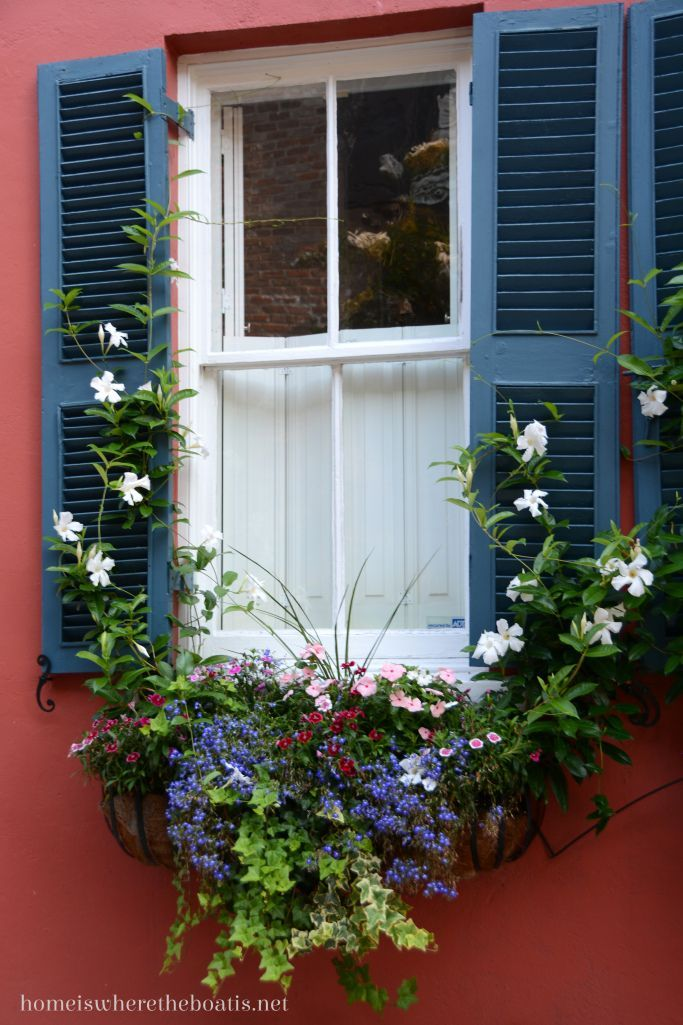 How about a climber in the window box? Even a perennial.