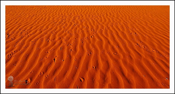 Birdsville area - Australia - this is why it is called the Red Centre.......photo by Phil Rettke photography