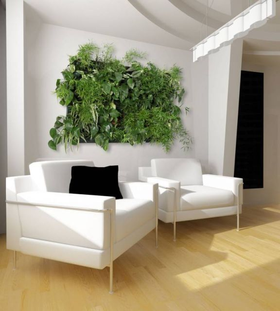 Do you stay in an apartment and you want to have a small garden in your own apartment? We can help y