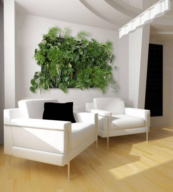 Un mur végétal pour un décor très original! 20 idées + VIDEO