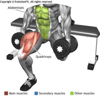 QUADRICEPS - BULGARIAN DUMBBELL SPLIT SQUAT
