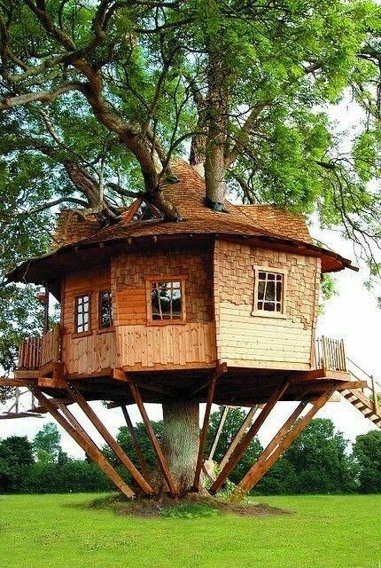 b0b27959ded28 Ağaç İçinde Birbirinden Güzel Doğa ile ormanlık alanda birleşmiş İnsanın  huzur bulacağı ev.