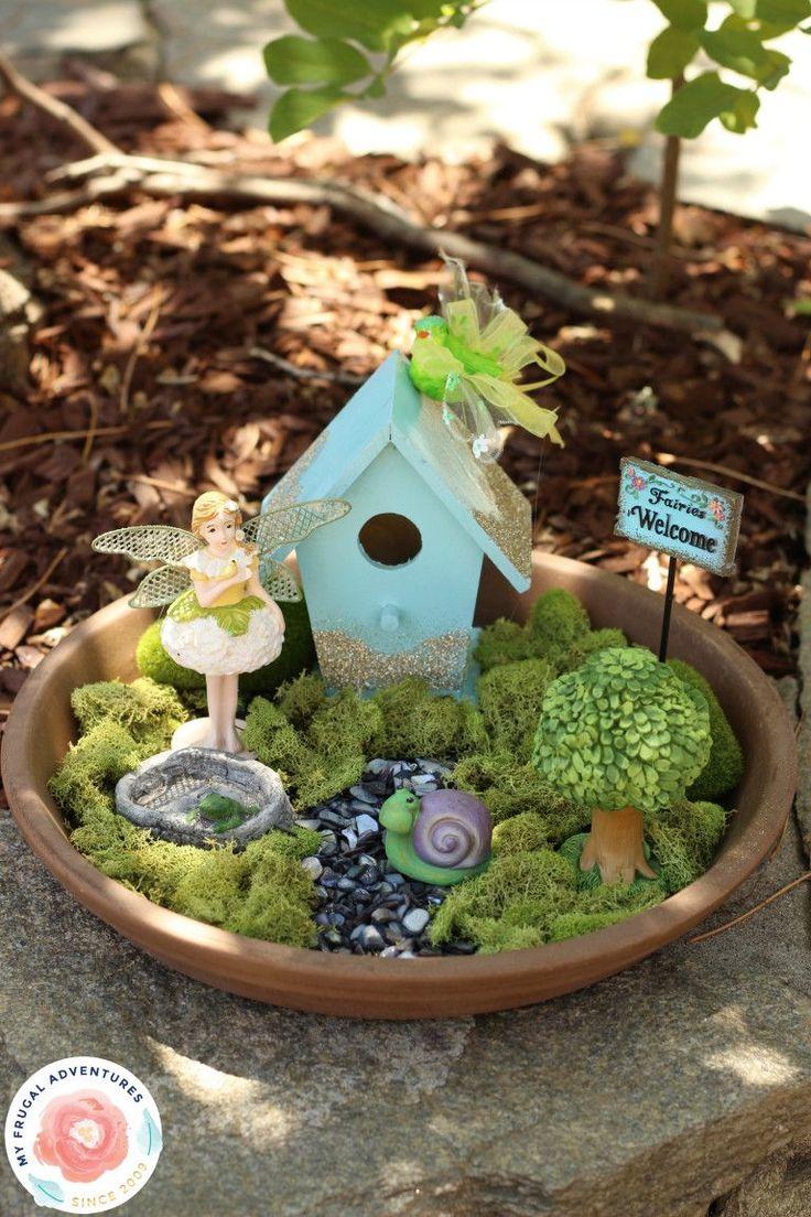 Best 25 indoor fairy gardens ideas on pinterest diy - Miniature plants for fairy gardens ...