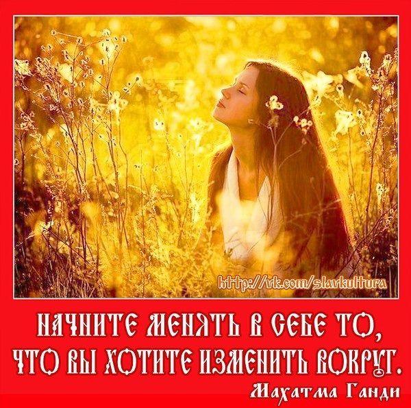 2364604570.jpg — Яндекс.Диск