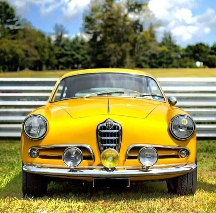 Best 25+ Alfa Romeo Ideas On Pinterest