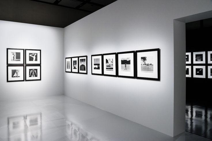芸術かポルノか----メイプルソープ写真展が示す写真芸術のあり方