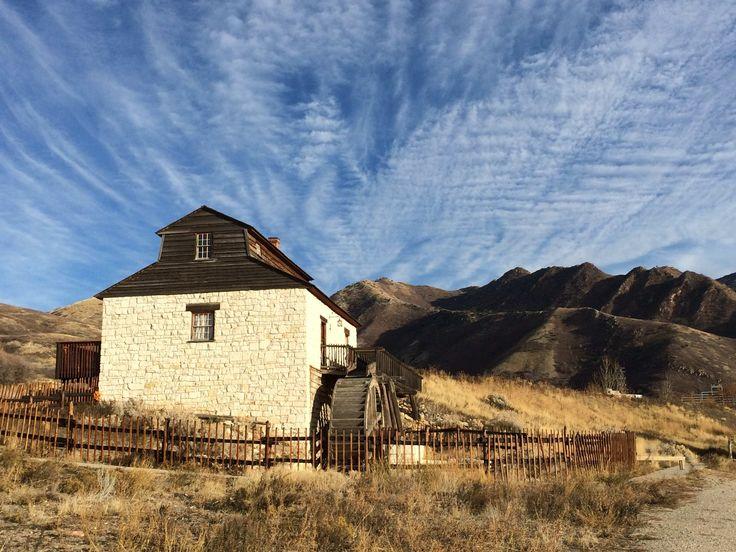 11++ Utah county animal shelter ideas