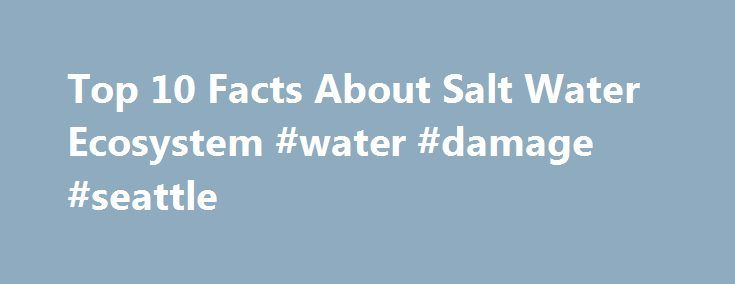 Top 10 Facts About Salt Water Ecosystem #water #damage #seattle http://ghana.remmont.com/top-10-facts-about-salt-water-ecosystem-water-damage-seattle/  # Top 10 Facts About Salt Water Ecosystem Related Articles Salt water ecosystems, also known as marine ecosystems, are aquatic ecosystems whose waters harbor a significant amount of dissolved salts. They are found in diverse geographic locations across the globe, and are home to an array of living and non-living components, from phytoplankton…