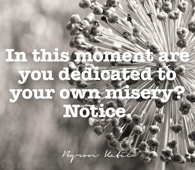 In this moment are you dedicated to your own misery? Notice.  —Byron Katie