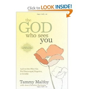 Amazon.com: The God Who Sees You: Look to Him When You Feel Discouraged, Forgotten, or Invisible: Tammy Maltby -- One of *the* most encouraging books for those dealing with any kind of struggle. God really sees you, knows you, and is with you.