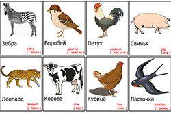 картинки животных для детей скачать и распечатать бесплатно