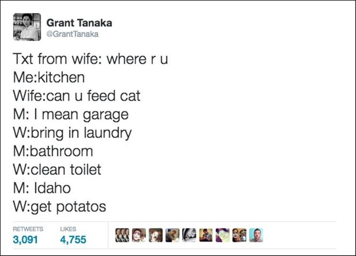 Best Memes Images On Pinterest Random Stuff A Bunny And - 24 hilarious twitter jokes