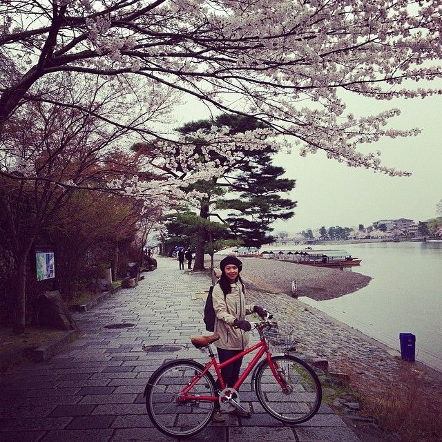 """I miss our trip to Japan last year during Cherry Blossom season. #arashimaya #bikeporn #japan #hanami #cherryblossom"""