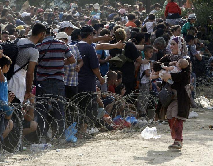 """Warum kommen so viele Flüchtlinge? Wer bekommt Asyl? Wer kann Deutscher werden? In unserem neuen Hintergrundformat """"Endlich verständlich"""" finden Sie Antworten auf die wichtigsten Fragen zum Thema Flüchtlinge und Einwanderung."""