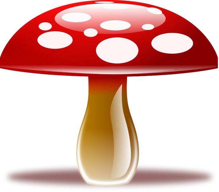 Clip Art Mushroom Clipart 1000 ideas about mushroom clipart on pinterest fairy free