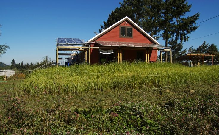 USDA Gives $63 Million In Grants To Rural Farms For Renewable Energy Projects - http://modernfarmer.com/2015/08/usda-renewable-energy-grants/?utm_source=PN&utm_medium=Pinterest&utm_campaign=SNAP%2Bfrom%2BModern+Farmer