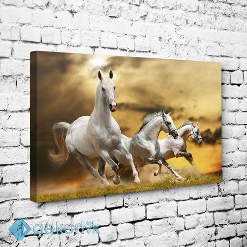 Beyaz Atlar Tablo I #hayvan_tabloları