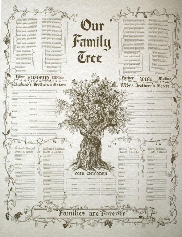 Our Family Tree - Families are Forever Bible Illumination