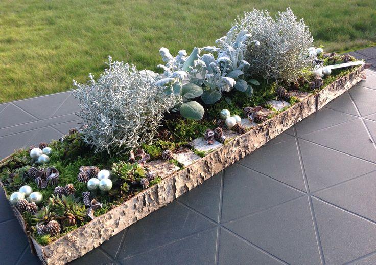 Langwerpig grafstuk met buitenplantjes.
