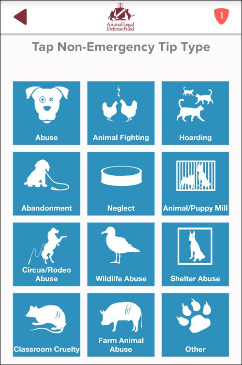 LiveSafe: Mobile App to Report Animal Cruelty- LiveSafe is designed to help animals by letting you report abuse and neglect right from your phone. Your animal abuse crime tips will immediately alert your local law enforcement when animals are in need of help—and justice | Animal Legal Defense Fund