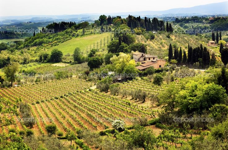 tuscany italy | Tuscan Farm Vineyard San Gimignano Tuscany Italy | Stock Photo ...