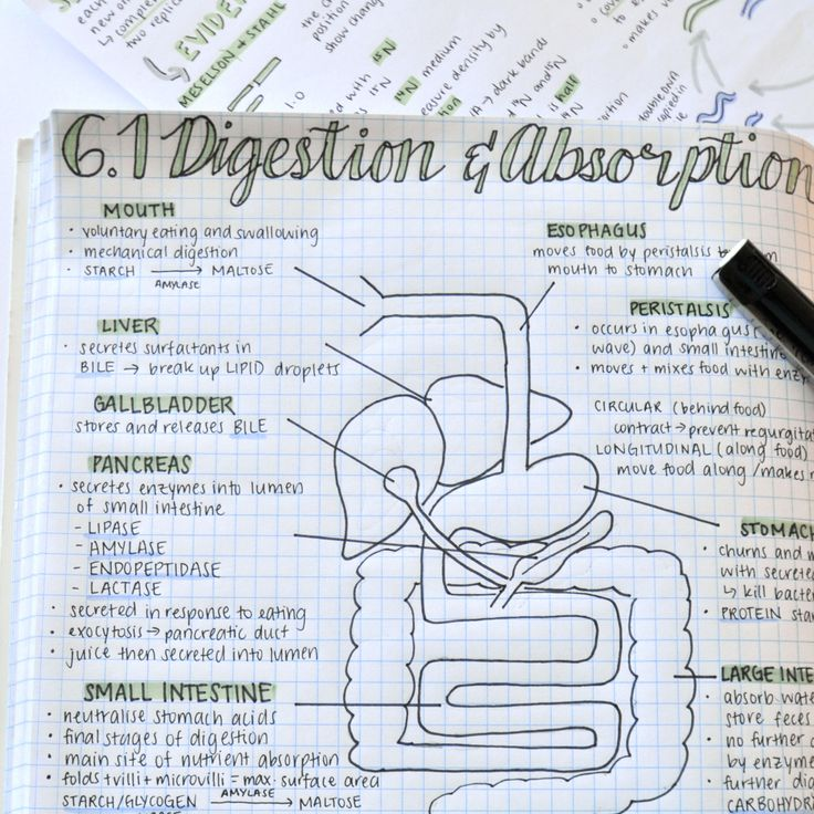 1000 Images About Academic Options For My Phd On: 1000+ Ideas About Finals Motivation On Pinterest