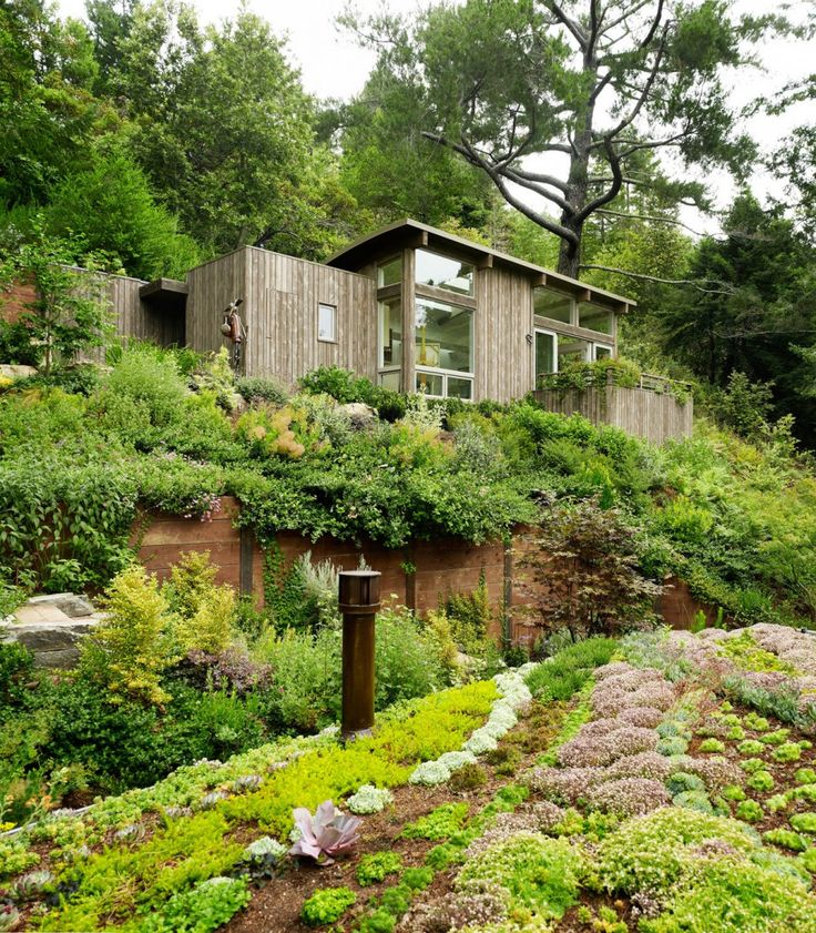 Mill Valley Cabins by Feldman Architecture: Mills Valley, Rooftops Gardens, Artists Studios, Feldman Architecture, Valley Cabins, Green Roof, Yoga Spaces, Roof Gardens, Small Cabins