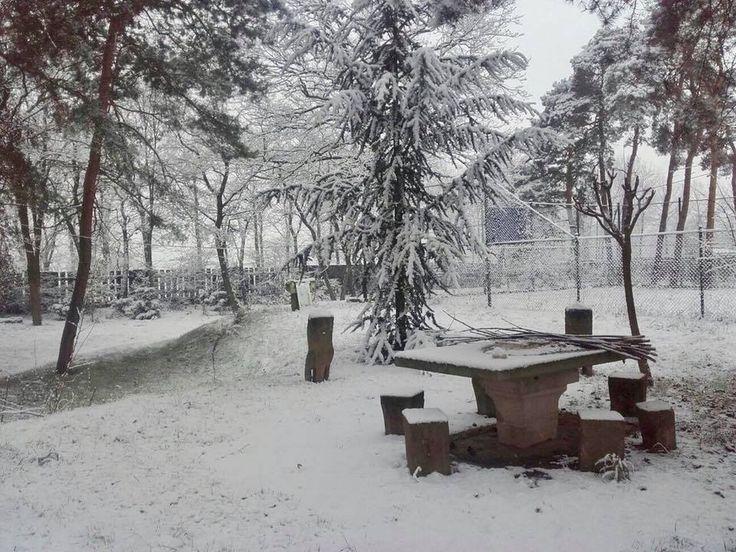 Zimni kralovstvi / Winter wonderland