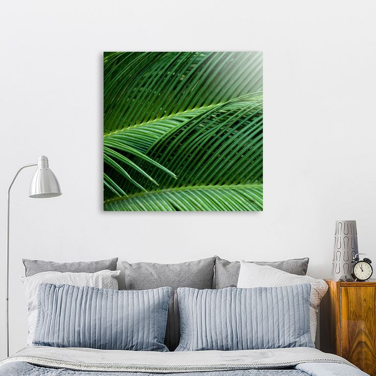 «Palm leaves I», Numbered Edition Aluminum Print by VanessaGF . #palmtree  #palmleaves #photography #plants #jungle #leaves #tropical #palm @Curioos
