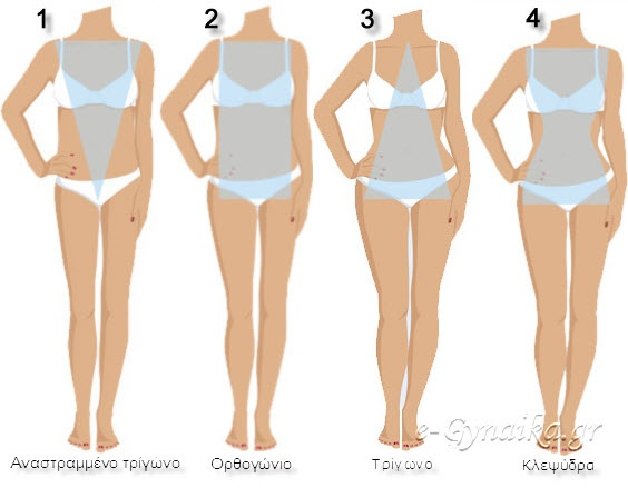bodytypes