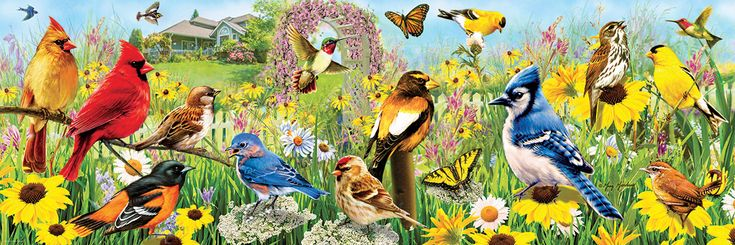 """Eurographics puzzles Garden Birds panoramic. Artwork by Greg Giordano 1000 pieces. Finished Puzzle Size: 19.25"""" x 26.5""""."""