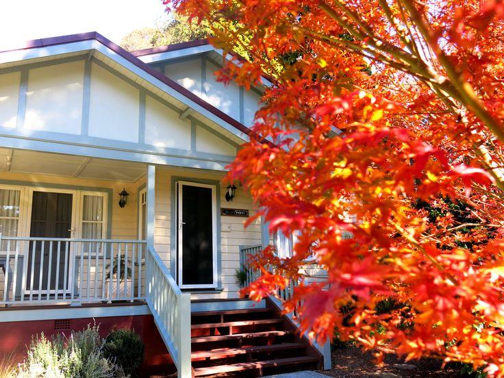 Autumn Blaze Brantwood Cottage Blackheath NSW