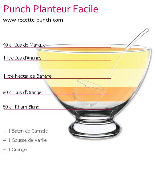 Photo Cocktail PUNCH PLANTEUR FACILE