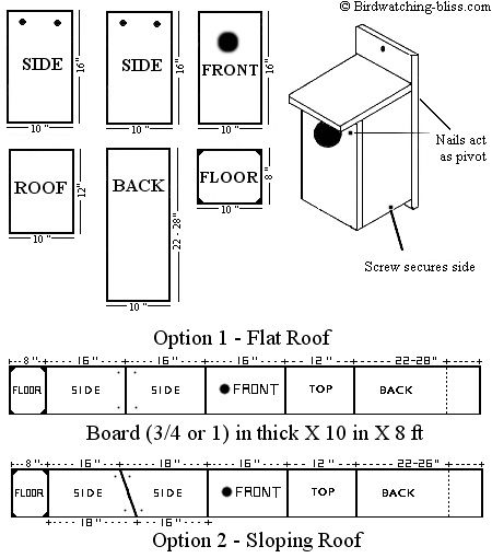 Printable Tree House Plans: Free American Kestrel Nest Box Plans