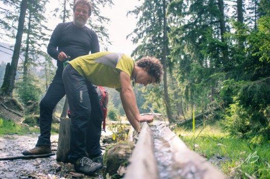 Bear Trek Transylvania | Tomorrow Bear