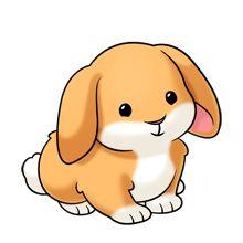 Resultado de imagen de rabbit cute