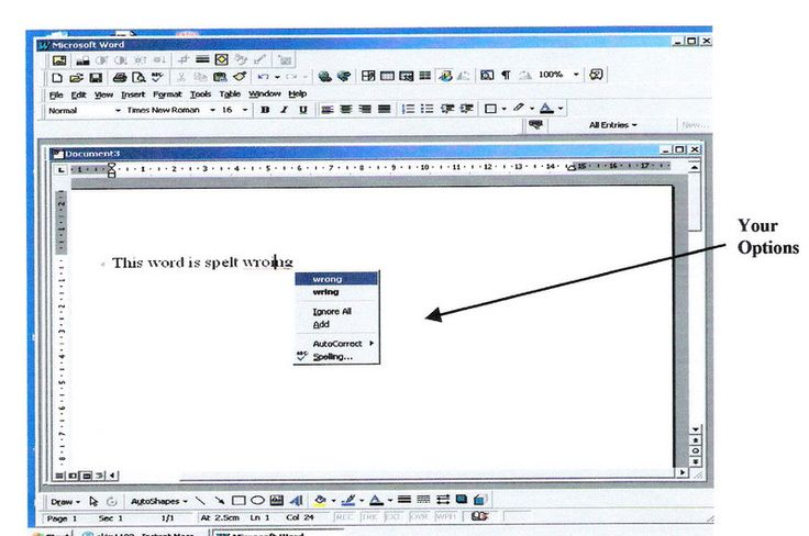 How to Use Microsoft Word: Spellcheck, Undo, Print, Copy and Paste
