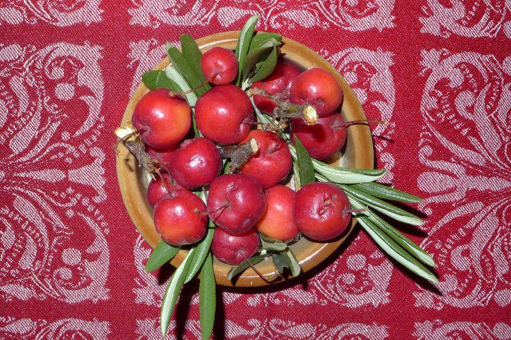 Kit Wong - Jack-in-the-box: Apples | Weitere Bilder von Kit Wong gibt's <a href='https://jazzygate.com/de/produkt-kategorie/fotografie/?pa_artists=kit-wong'> hier</a>.