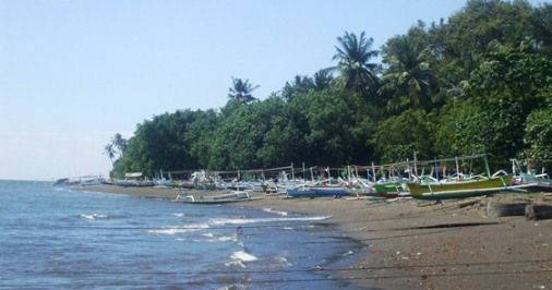 Lovina beach offer a lovely grayish black sandy beach and tranquil feeling to sighseeing in the North Coast of Bali. The north sea of Bali is bit calm than the south and safe for swimming. The local fisherman's boat also harbour along the beach, tradisional and colorful.